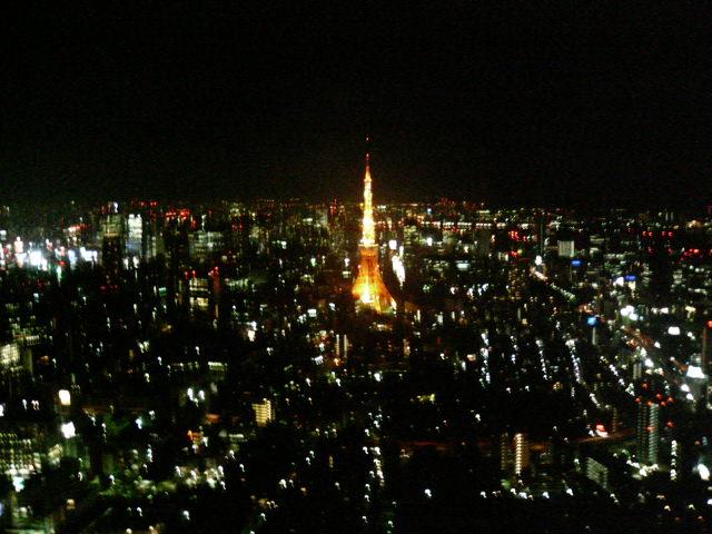 ヒルズからの東京タワー